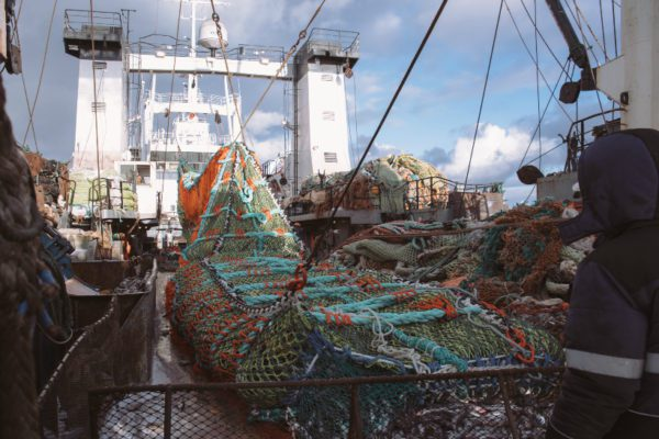 Russian Fishery companies Email List with details 12600 entities