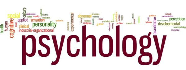 Applied Psychology & Psychotherapy Journal subscribers Email list 8.700 Emails