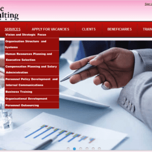 Nigeria - Management & HR Consulting Company Contacts Email list (actual data from sunroseconsulting.com) 88.200 Emails